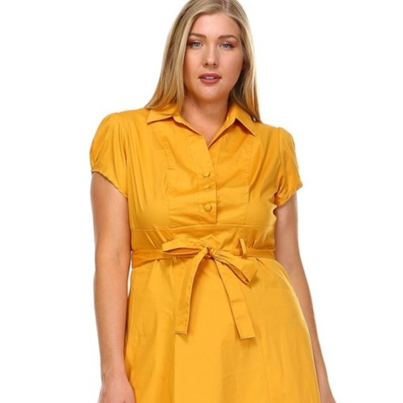 Kayden Reneice Boutique Dresses Plus Size Flare Dress With Puff